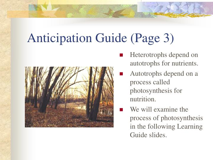 Anticipation Guide (Page 3)