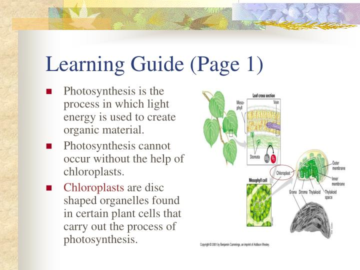 Learning Guide (Page 1)