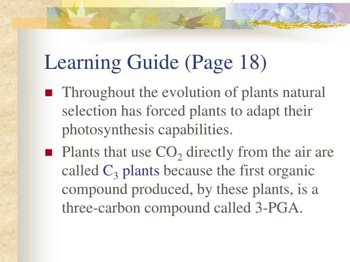 Learning Guide (Page 18)