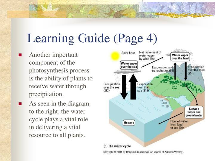 Learning Guide (Page 4)