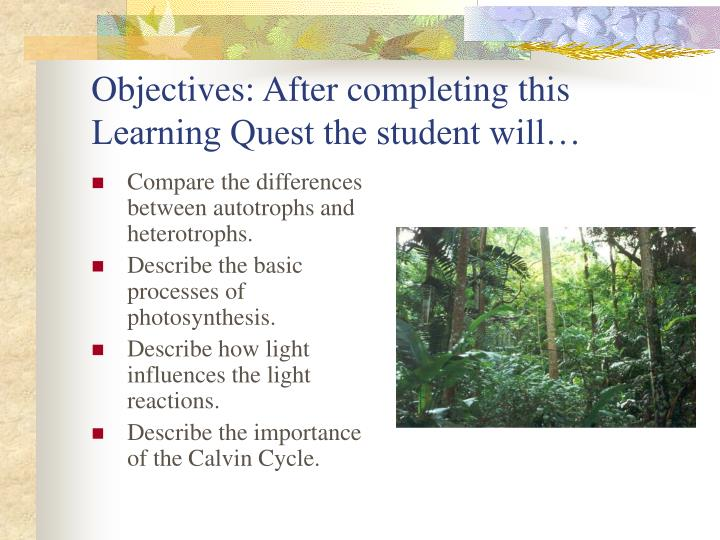 Objectives after completing this learning quest the student will