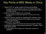 key points of bee works in china