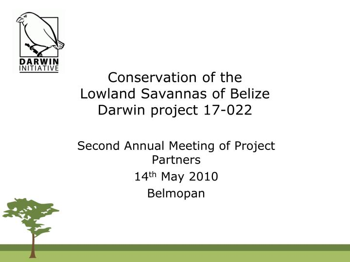 Conservation of the lowland savannas of belize darwin project 17 022