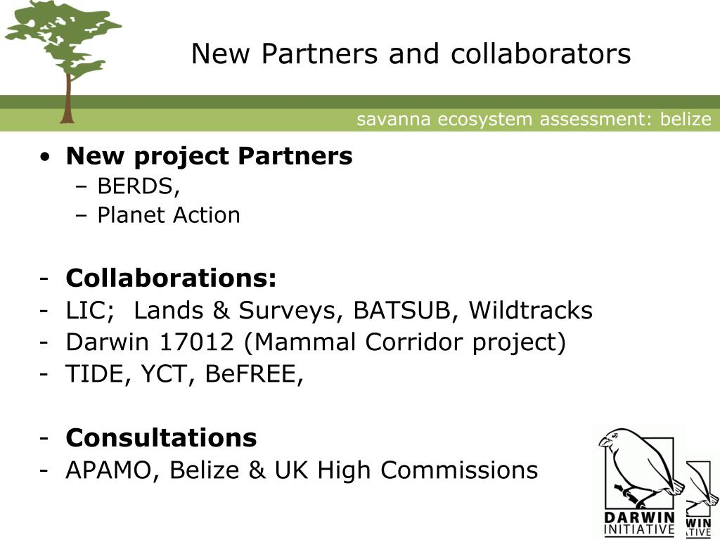 New Partners and collaborators