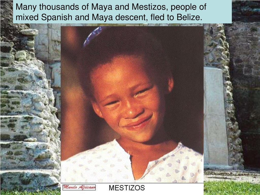 Many thousands of Maya and Mestizos, people of mixed Spanish and Maya descent, fled to Belize.