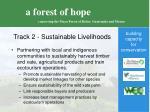 track 2 sustainable livelihoods11