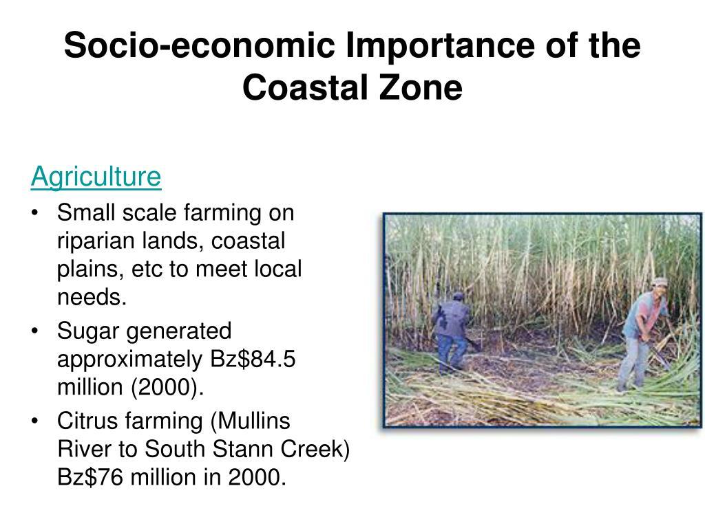 Socio-economic Importance of the Coastal Zone