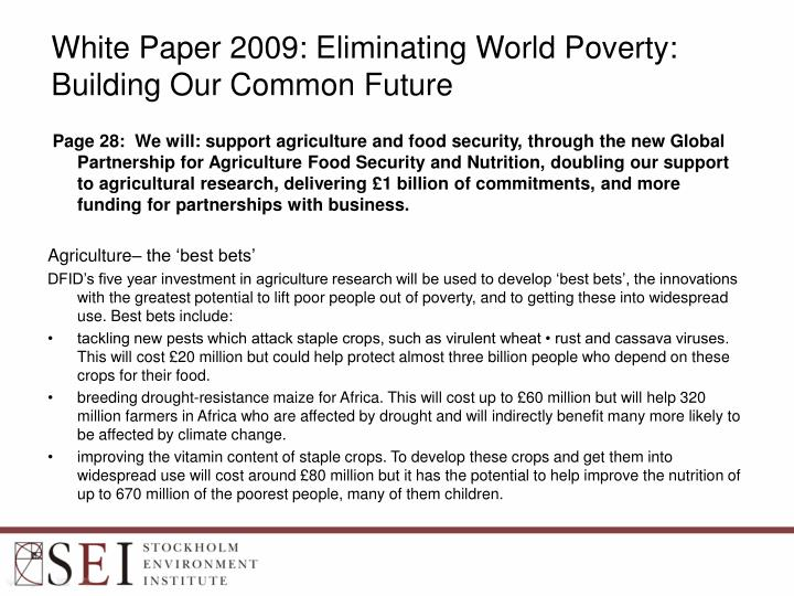future worlds essay Okay, feature article all edited and formated pretty, math done, not going to do the essay tonight, guitar will do, reading may not do mother tongue critical essay persuasive essay zoos how to write a good introduction for a critical essay 100 word essay on pollution pollutants yessayan le mall origins of first world war historiography essay.