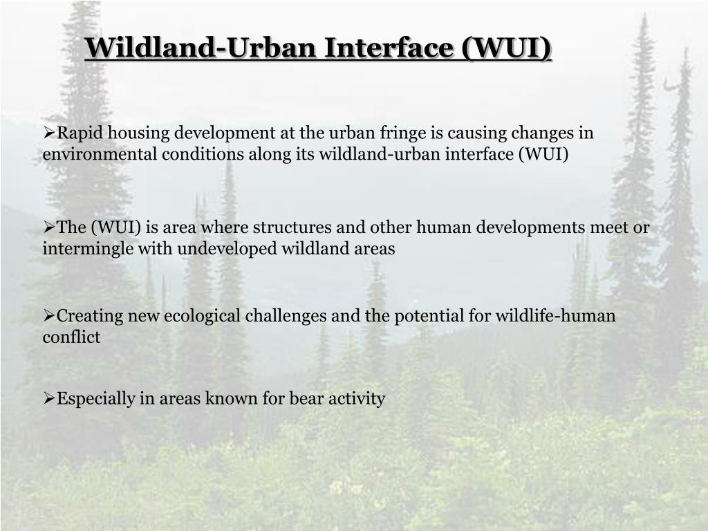 Wildland-Urban Interface (WUI)
