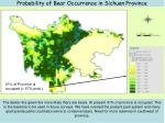 probability of bear occurrence in sichuan province