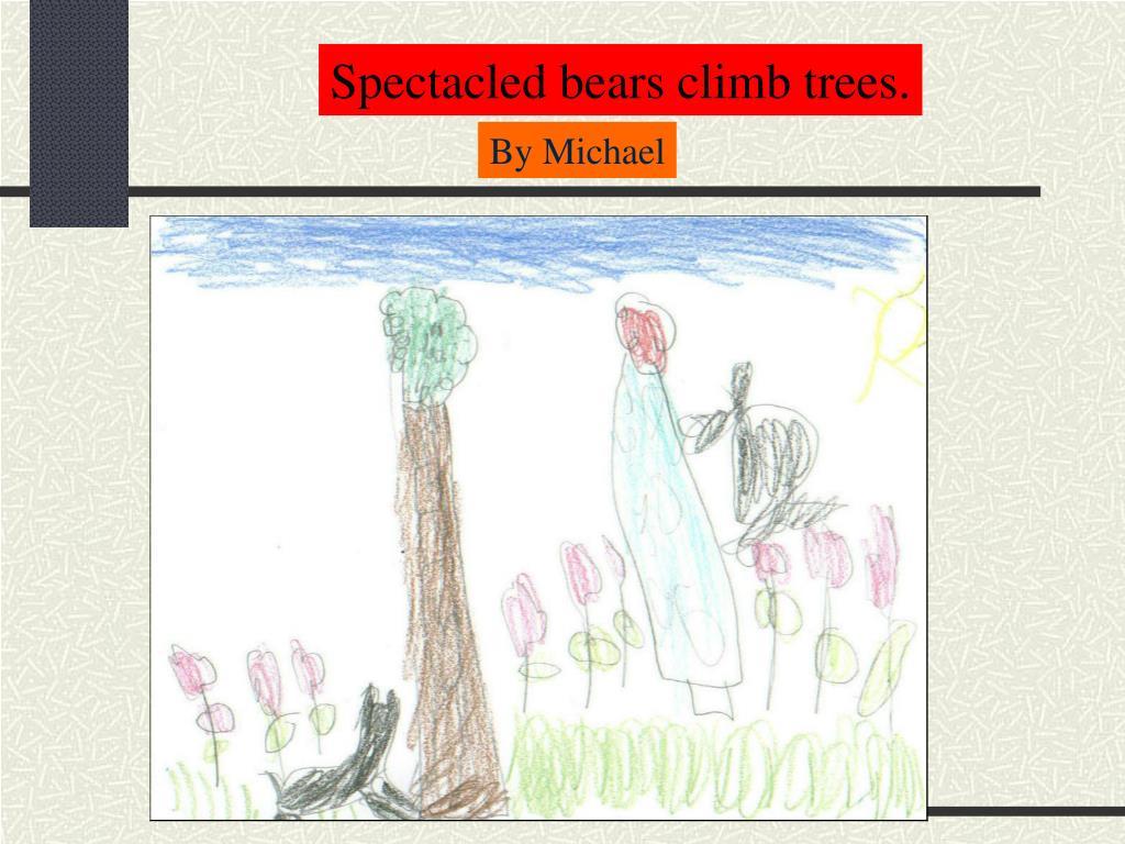Spectacled bears climb trees.
