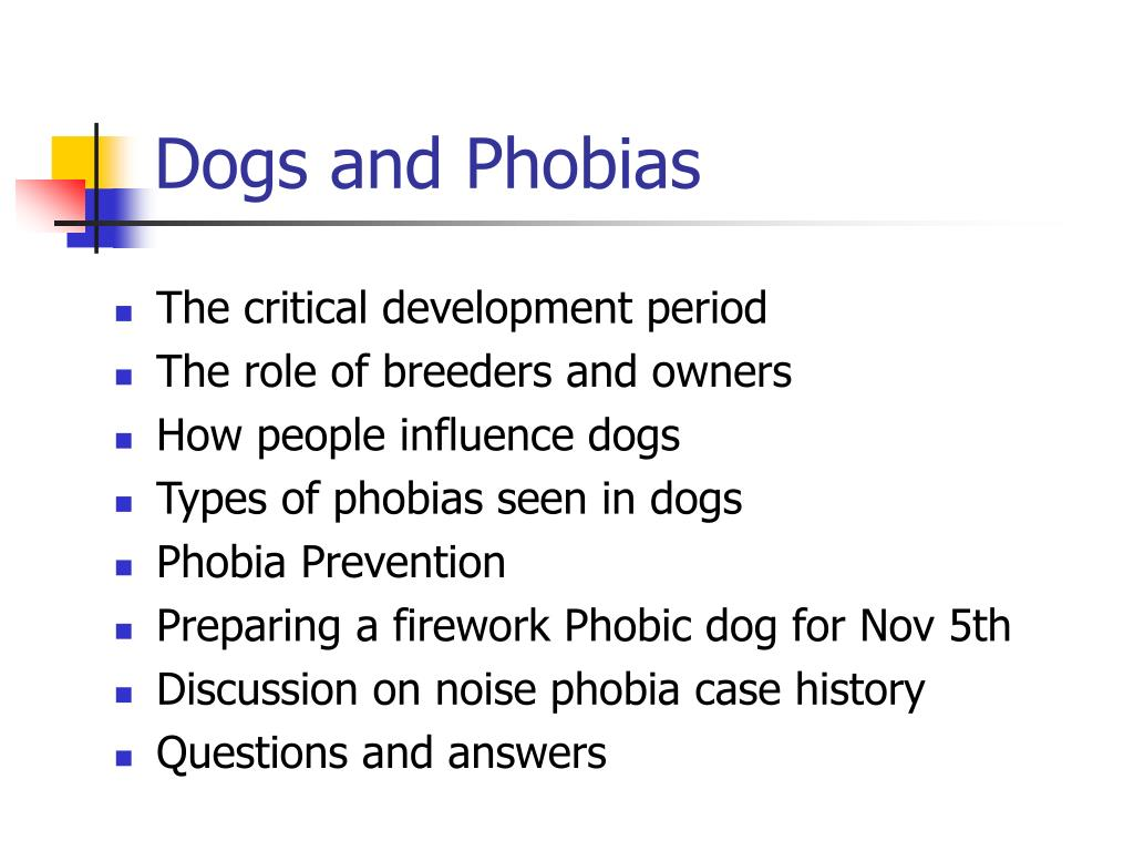 dogs and phobias l.