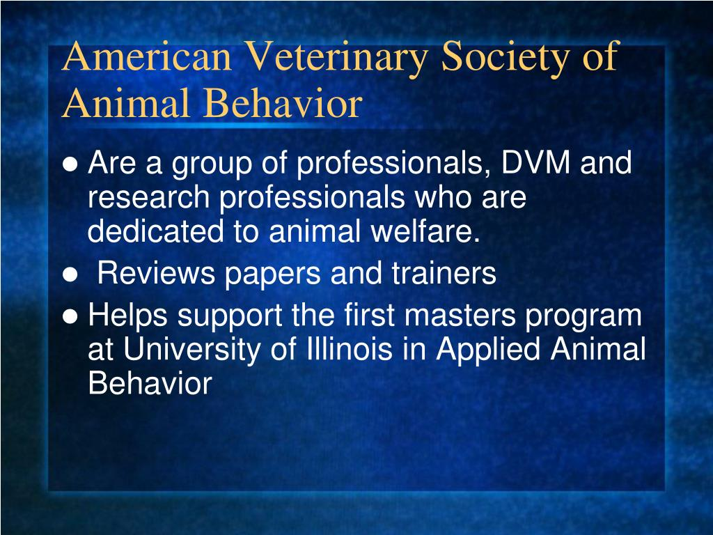American Veterinary Society of Animal Behavior