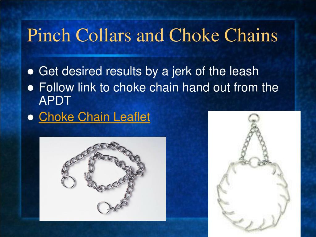 Pinch Collars and Choke Chains