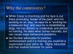 why the controversy