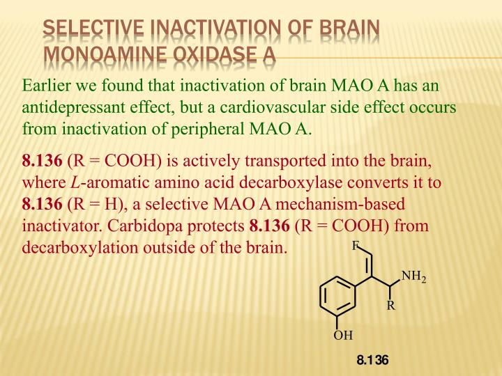 Selective Inactivation of Brain Monoamine Oxidase A