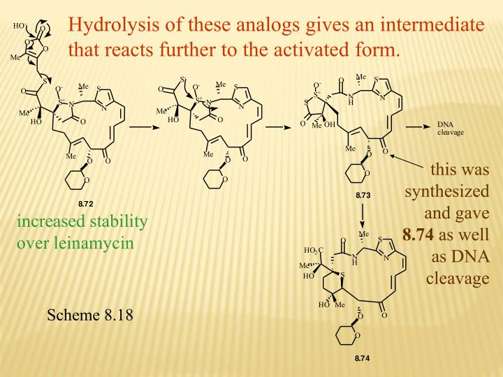 Hydrolysis of these analogs gives an intermediate that reacts further to the activated form.