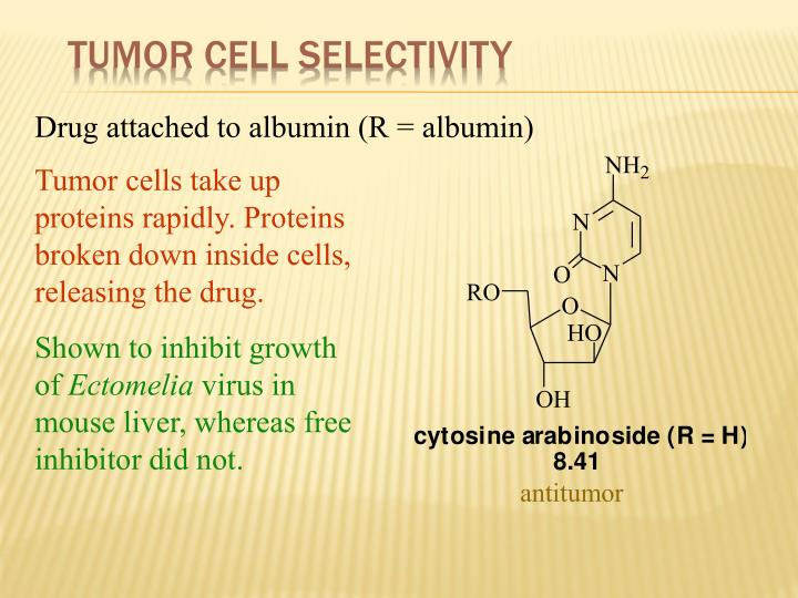 Tumor Cell Selectivity