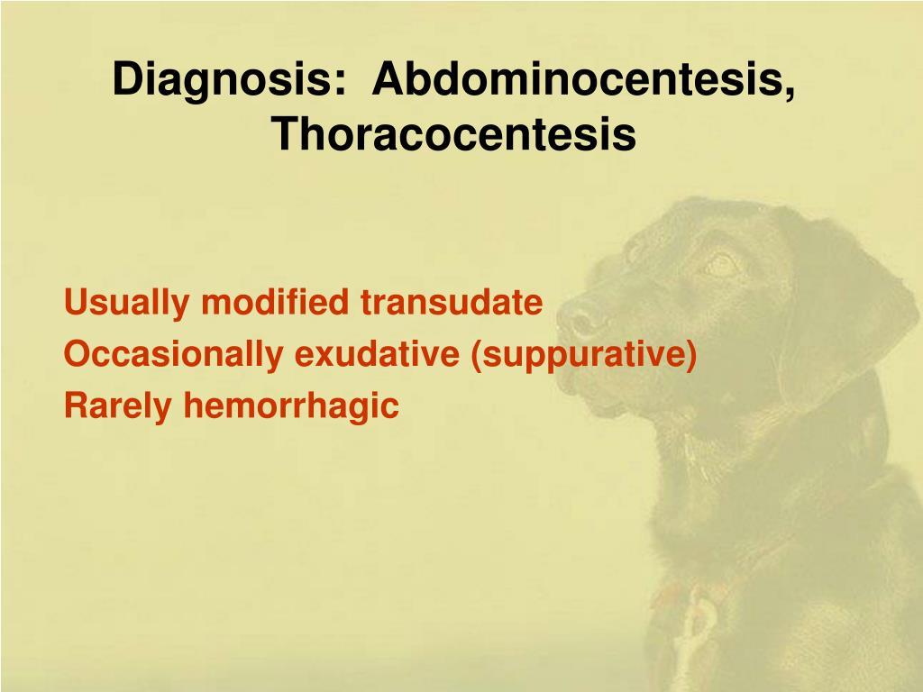 Diagnosis:  Abdominocentesis, Thoracocentesis