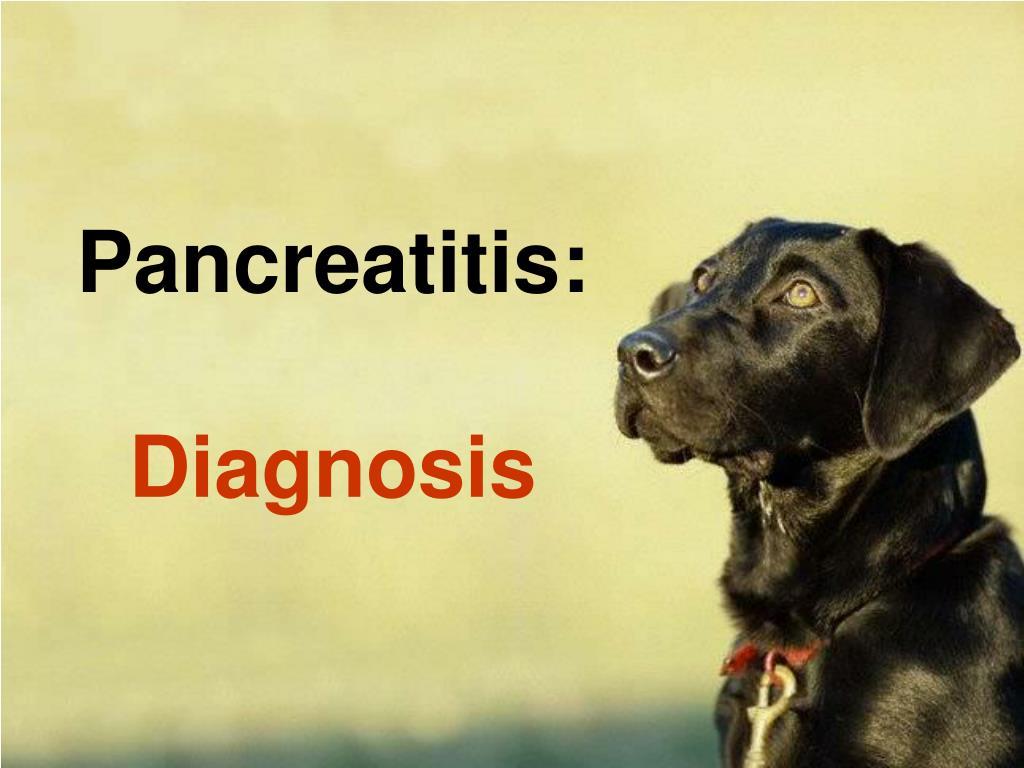 Pancreatitis: