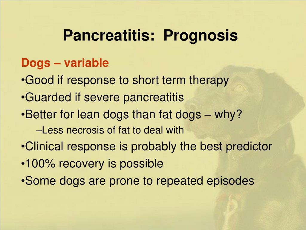 Pancreatitis:  Prognosis