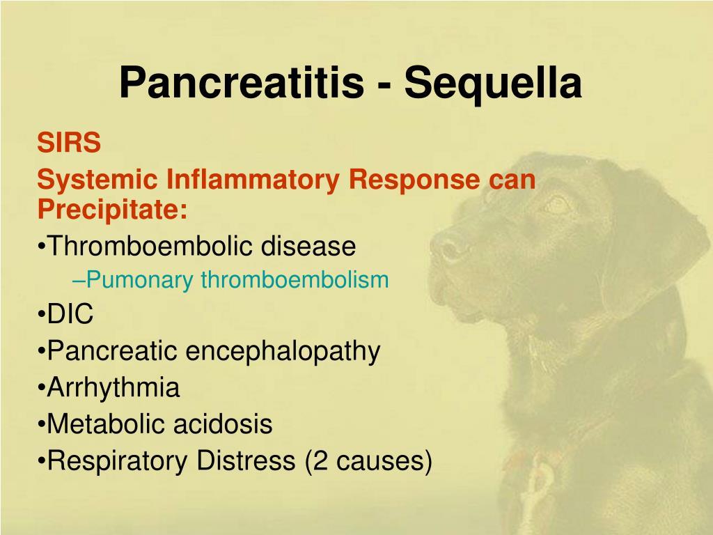 Pancreatitis - Sequella