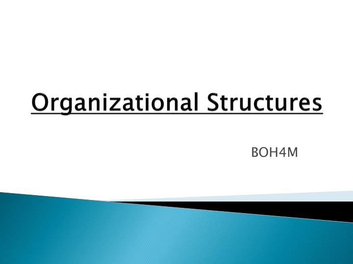 organizational structures n.