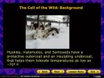 the call of the wild background16