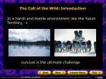 the call of the wild introduction