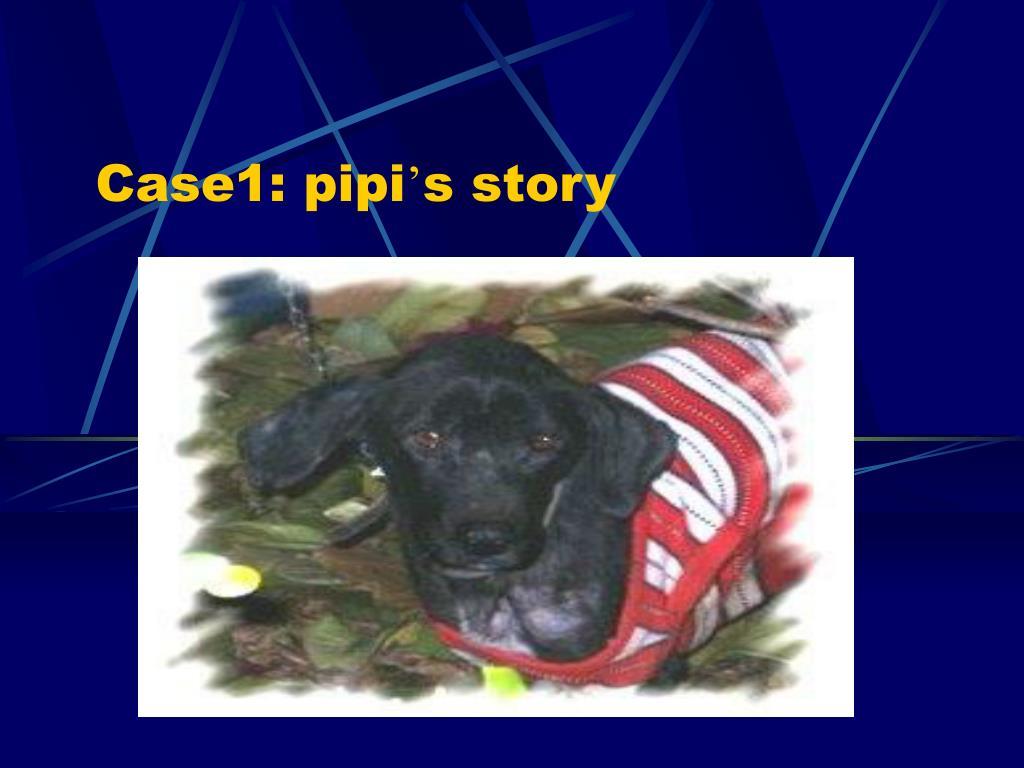 Case1: pipi