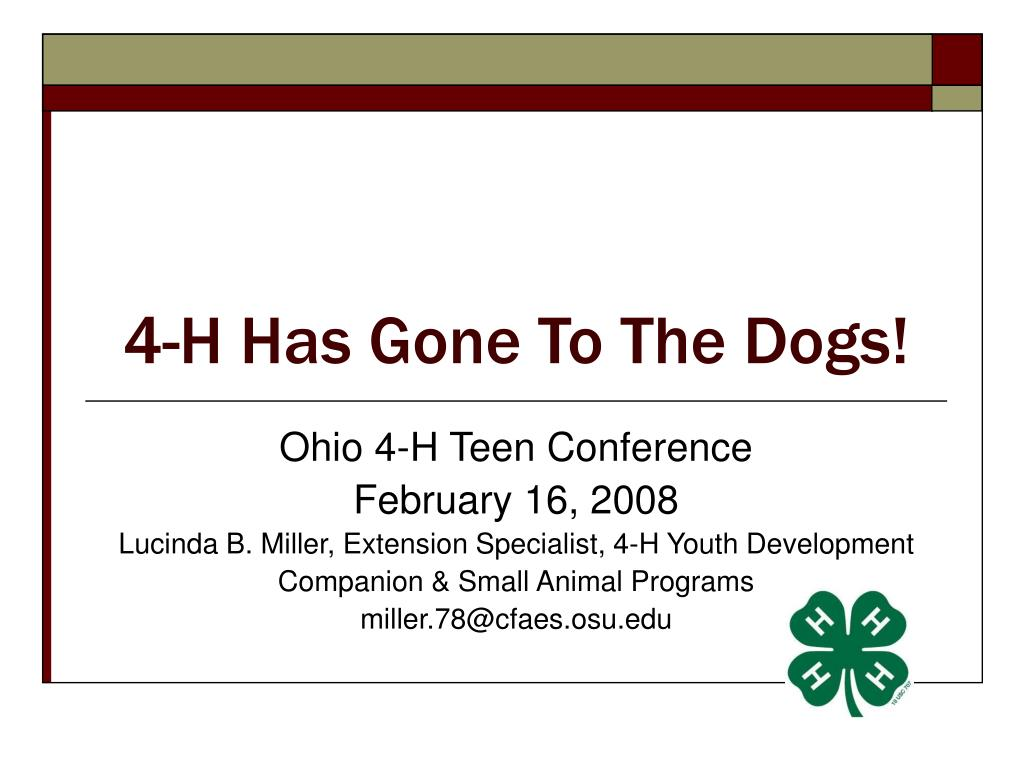 4 h has gone to the dogs l.