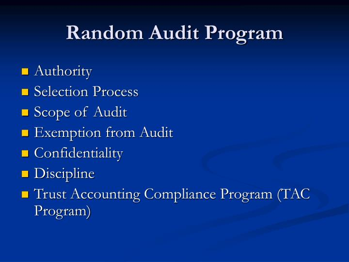 Random Audit Program