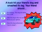 a truck hit your friend s dog and smashed it s leg your friend should