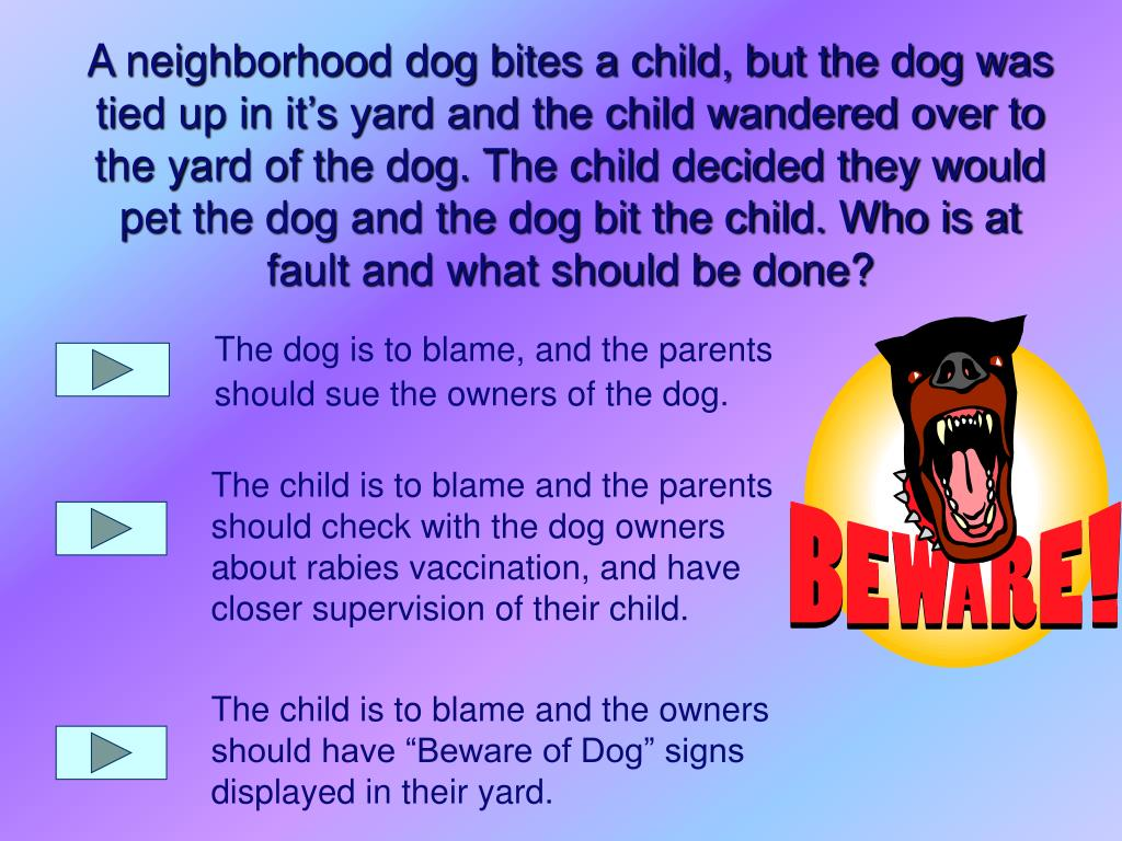 The dog is to blame, and the parents should sue the owners of the dog.