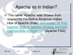 apache as in indian