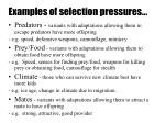 examples of selection pressures
