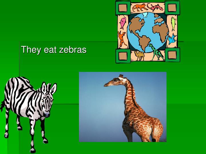 They eat zebras