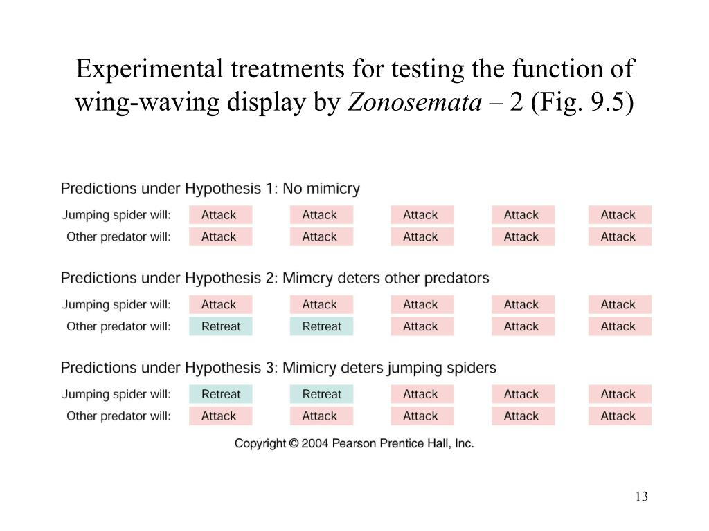 Experimental treatments for testing the function of wing-waving display by