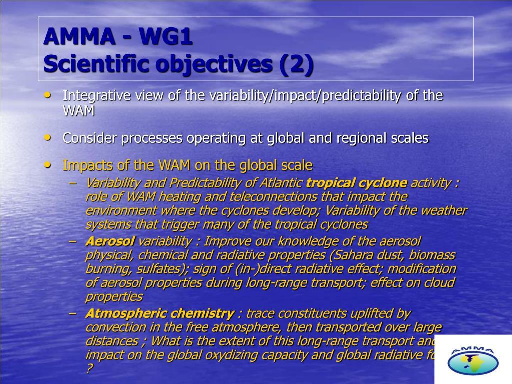 AMMA - WG1
