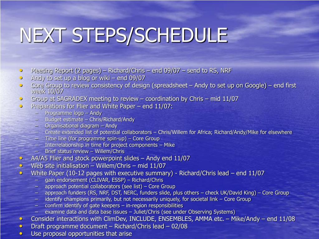 NEXT STEPS/SCHEDULE