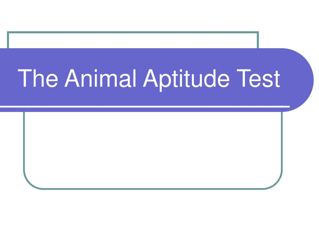 the animal aptitude test l.