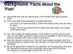 background facts about the fish