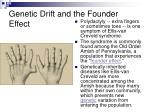 genetic drift and the founder effect