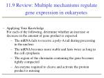 11 9 review multiple mechanisms regulate gene expression in eukaryotes2