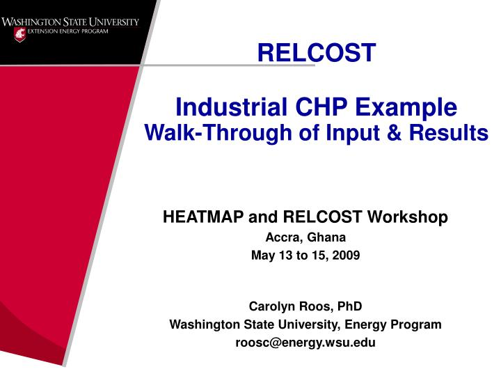 Relcost industrial chp example walk through of input results
