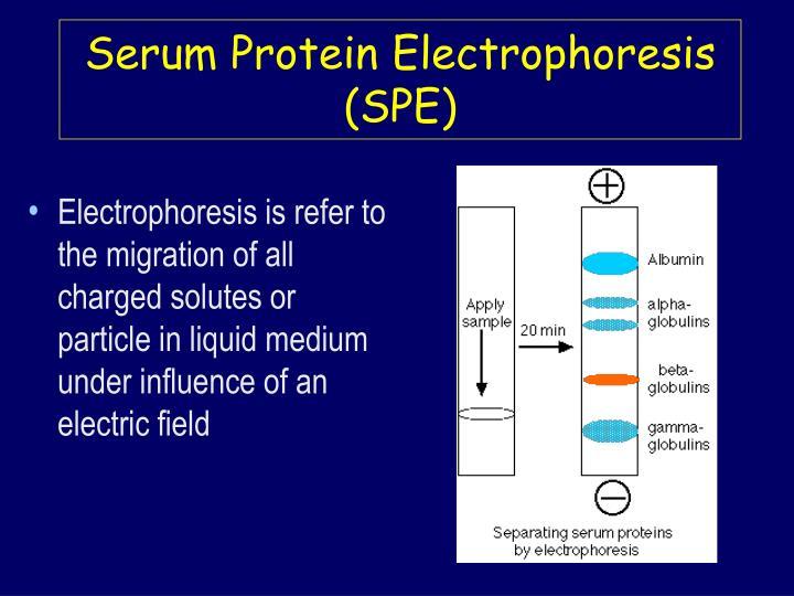 Serum protein electrophoresis spe