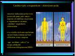 ljudsko tijelo u magnetskom i elektri nom polju