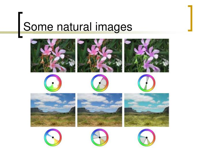 Some natural images