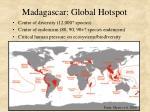madagascar global hotspot