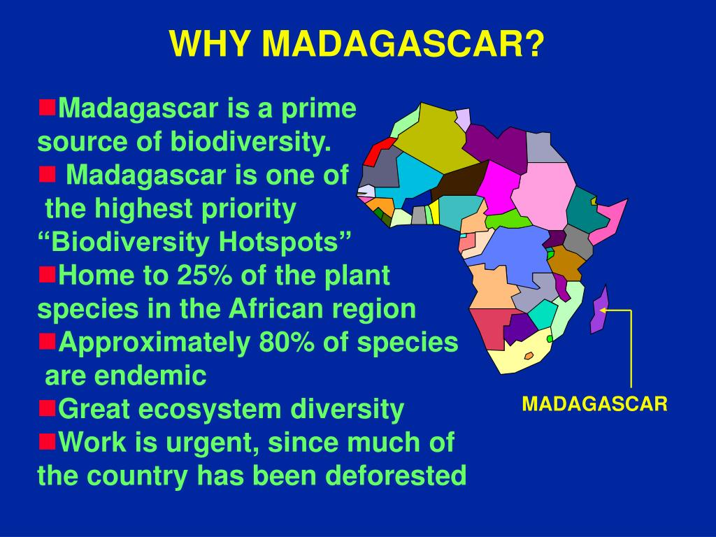 WHY MADAGASCAR?